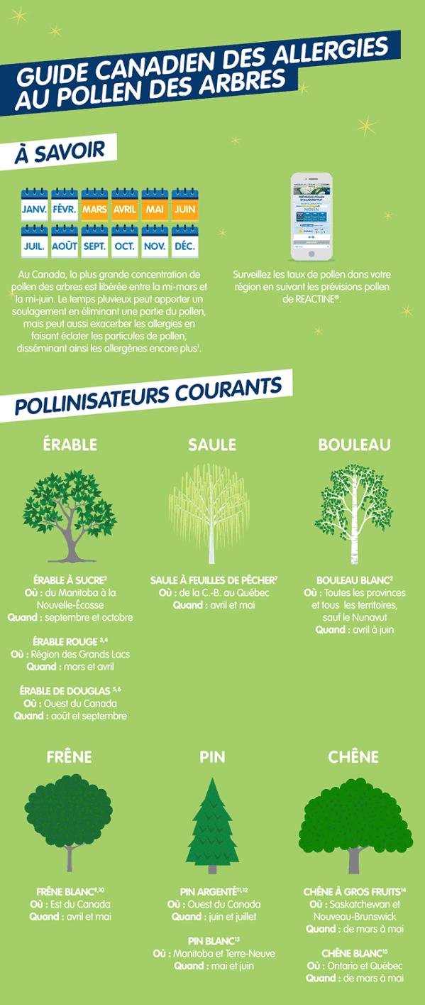 Guide canadien des allergies au pollen des arbres