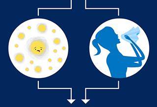 Allergies ou rhume?